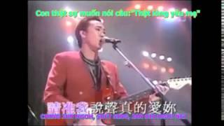 [Vietsub+Pinyin]Thật sự yêu mẹ-Beyond-真的爱你