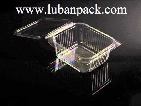 Disposable Plastic Container Manufacturer - Luban Pack