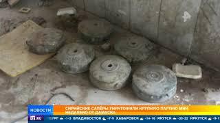 Сирийские саперы уничтожили крупную партию мин недалеко от дамаска