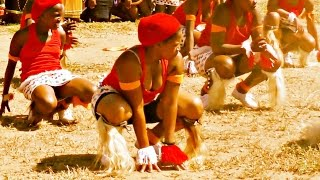 INDLAMU Kwazulu Natal Best Zulu Dance (Must Watch)