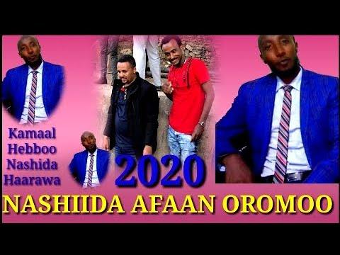 Download New Nashida Afaan Oromoo Kamaal Hebboo 2020