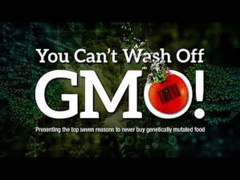 GMO: The Biggest Threat to Our Environment Today