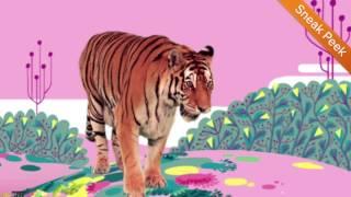 sneak peek animal songs from the storybots