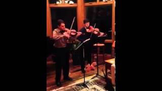 Sibelius: Duo in C Major 1891-92 by Classic Strings Duo