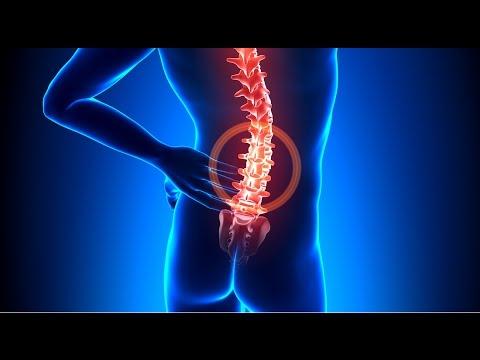 Cviky proti bolesti zad / bolestiam chrbta / back pain
