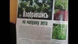 Журнал Огородник №7 июль, ч.1