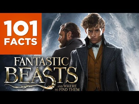 Thumbnail: 101 Facts About Fantastic Beasts And Where To Find Them
