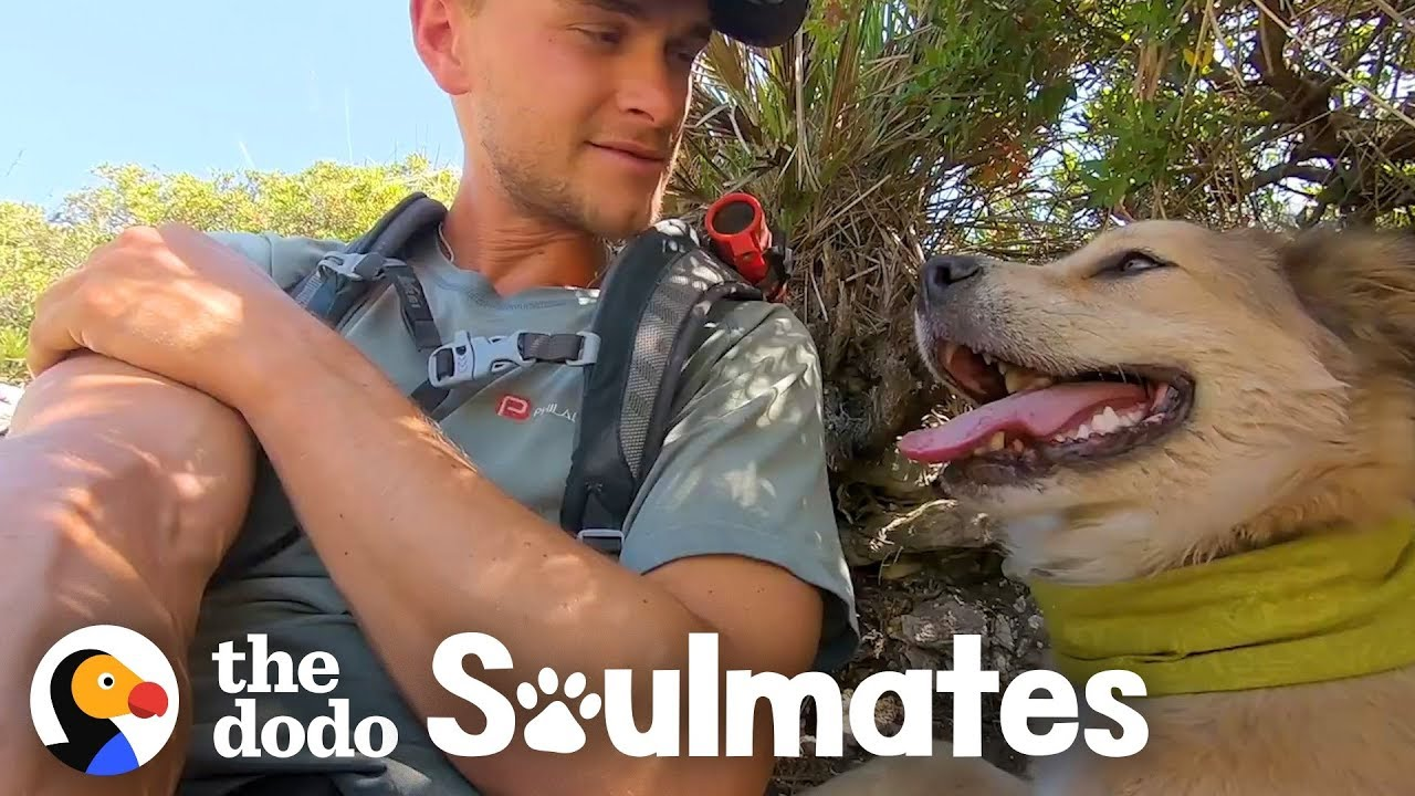This Guy's Walking His Dog Around the World | The Dodo Soulmates