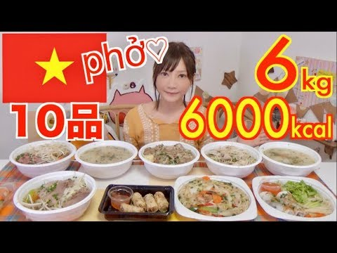 【MUKBANG】 10 Vietnamese Foods! Various Phở! Steamed, Raw & Fried Spring Rolls! 6Kg 6000kcal[Use CC]