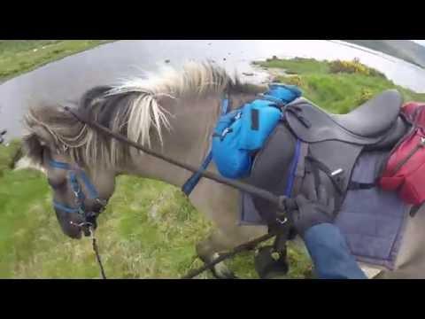 Scottish Highlands Horseback Riding Trek