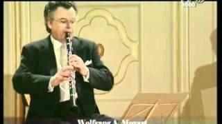 Mozart - Divertimento n. 3 in Si bemolle maggiore KV 439b - 1. Allegro