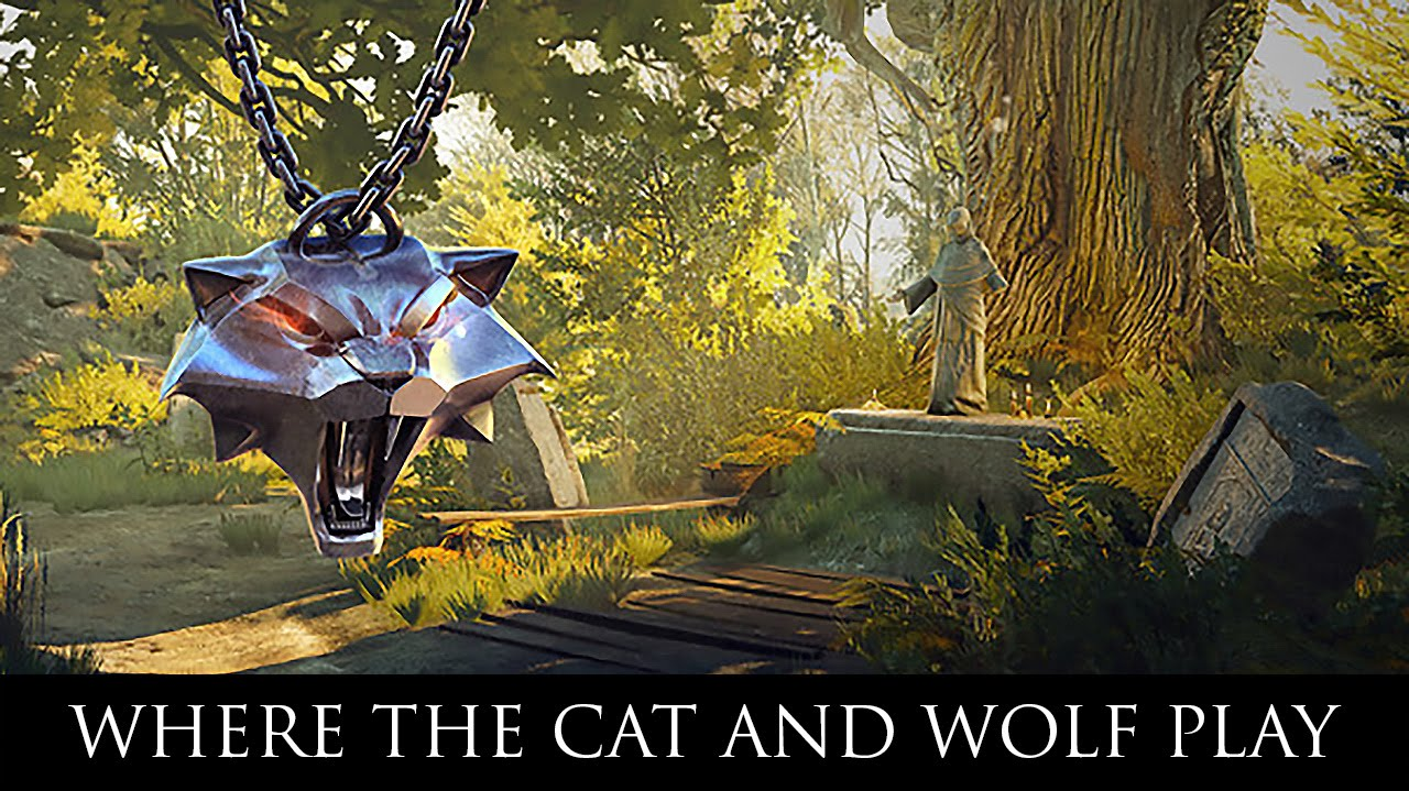Witcher  Cat And Wolf Play