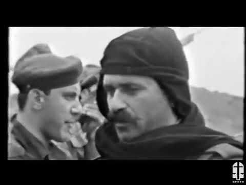 Արաբո Ջոկատ