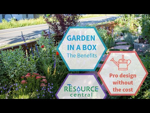 Garden In A Box Benefits: Professional Design Without the Cost