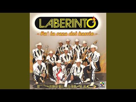 Pa'la Raza Del Barrio