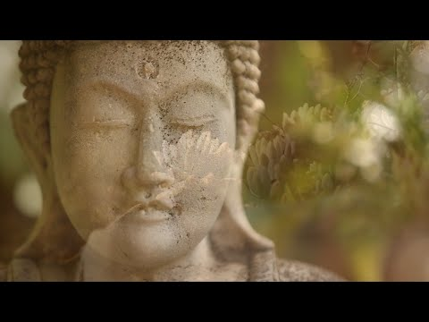 You Are Silence Itself ~ Guided Meditation with Sri Mooji