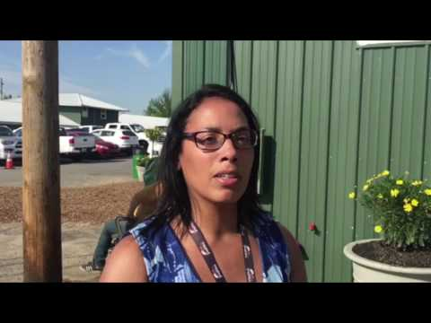 Preakness 2017 picks by Alicia Hughes of BloodHorse