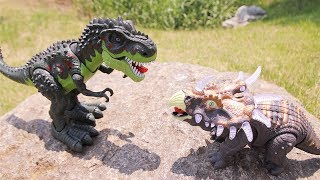 Battle Triceratops VS. T-rex. Walking Sound Light Like Real Dinosaurs. Learn New Dinosaurs Toys.