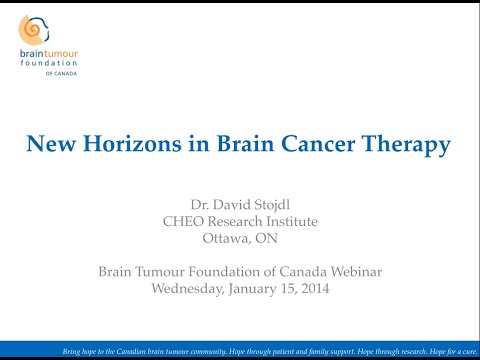 Oncolytic Viruses and New Horizons in Brain Cancer Therapies