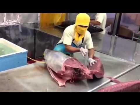 Xem người Nhật xẻ thịt cá Ngừ đại dương