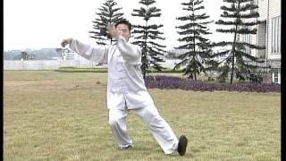 Meravigliosa esecuzione di forma Tai Chi - stile yang