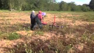 Wiping Willows and Tussock weeds out of a new planting of cranberries in Washington