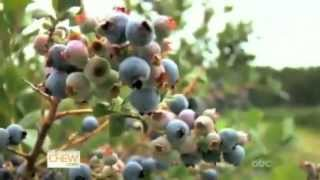 Learn how blueberries are grown and harvested with The Chew!