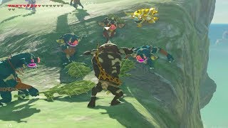 Zelda Breath of The Wild: Bokoblin Flight class