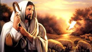 DESDE EL CORAZÓN DE JESÚS | SATISFACCIÓN DE VIDA