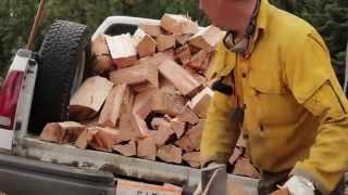 Fall Firewood