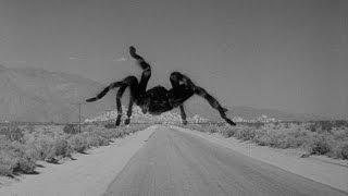 обзор паука на радиоуправлении 1 robot, spider, review, game, toy, boy, children, holiday,