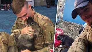 Soldier Hugs Puppy Rescued From Other Side of the World