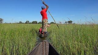Botswana: Okavango Delta & Chobe River in 4K Ultra HD