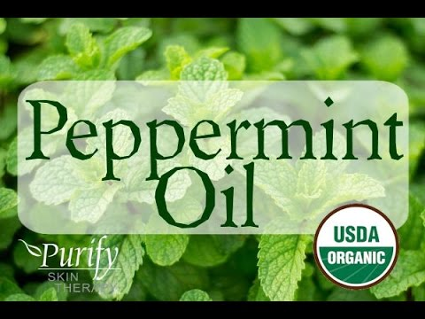 Peppermint Essential Oil, All You Ever Need To Know