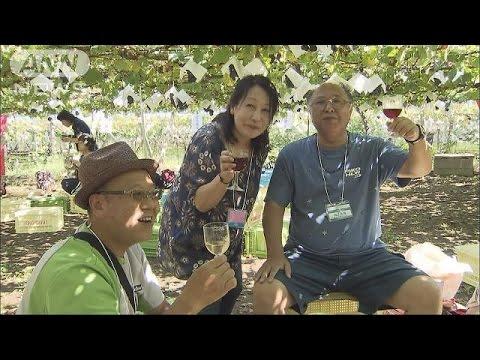 恒例ワイン祭り この時期限定「もろみワイン」人気(16/09/10)