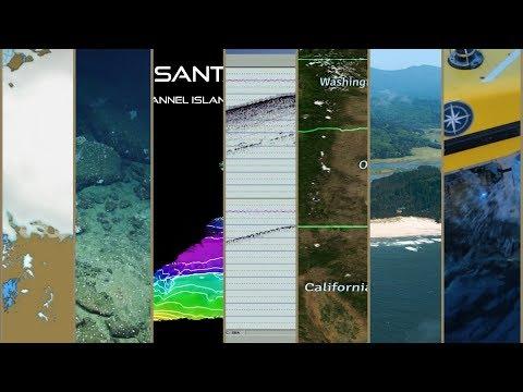 Expedition in 60 Seconds: Heceta Bank | Nautilus Live