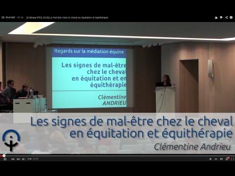 [Colloque IFEq 2014] Le mal être chez le cheval en équitation et équithérapie