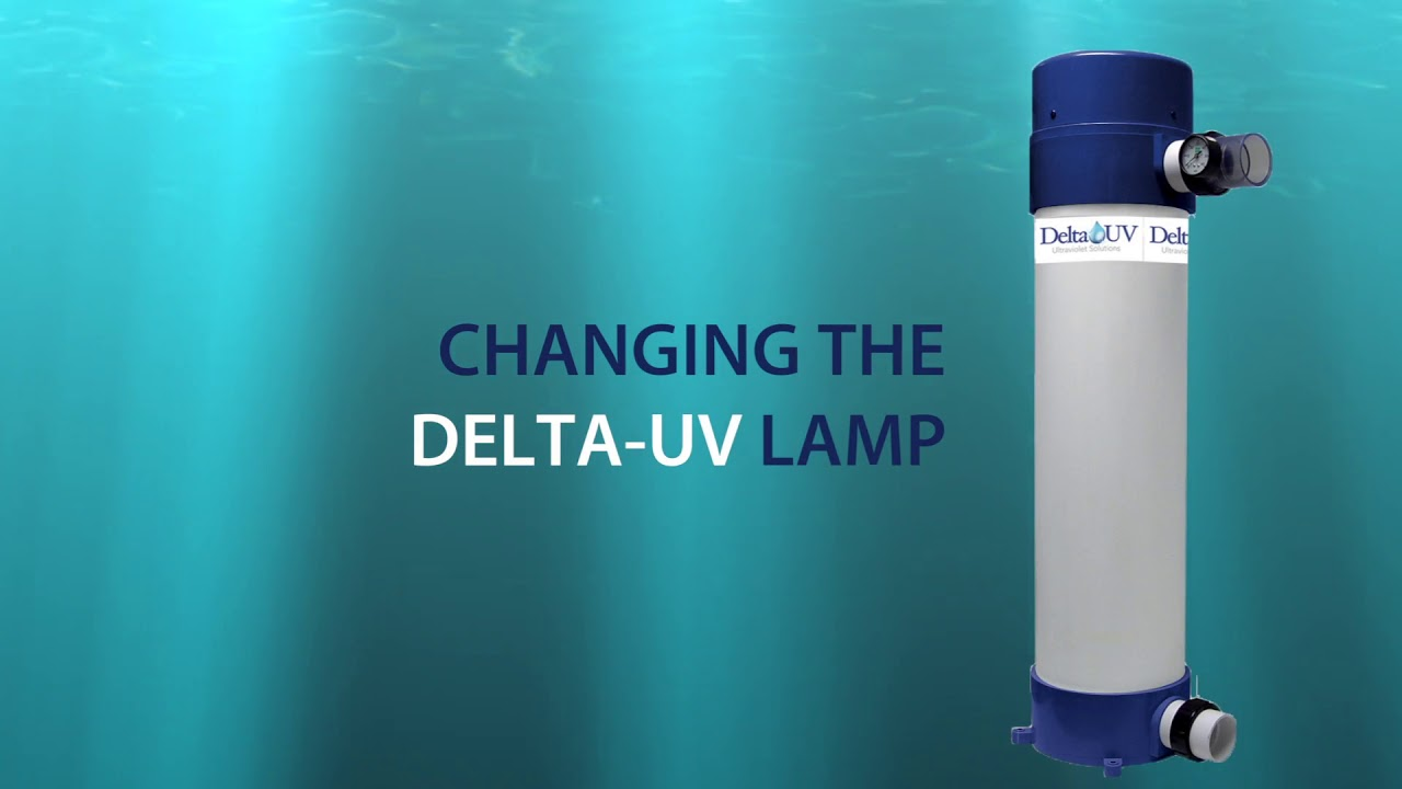DELTA-UV TUTORIAL: installation / maintenance - water treatment for  RESIDENTIAL POOLS