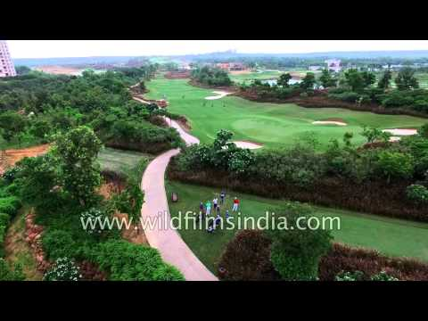 Flying over the greens and fairways of DLF Golf Course, Aralias & Magnolias apartments, Gurgaon