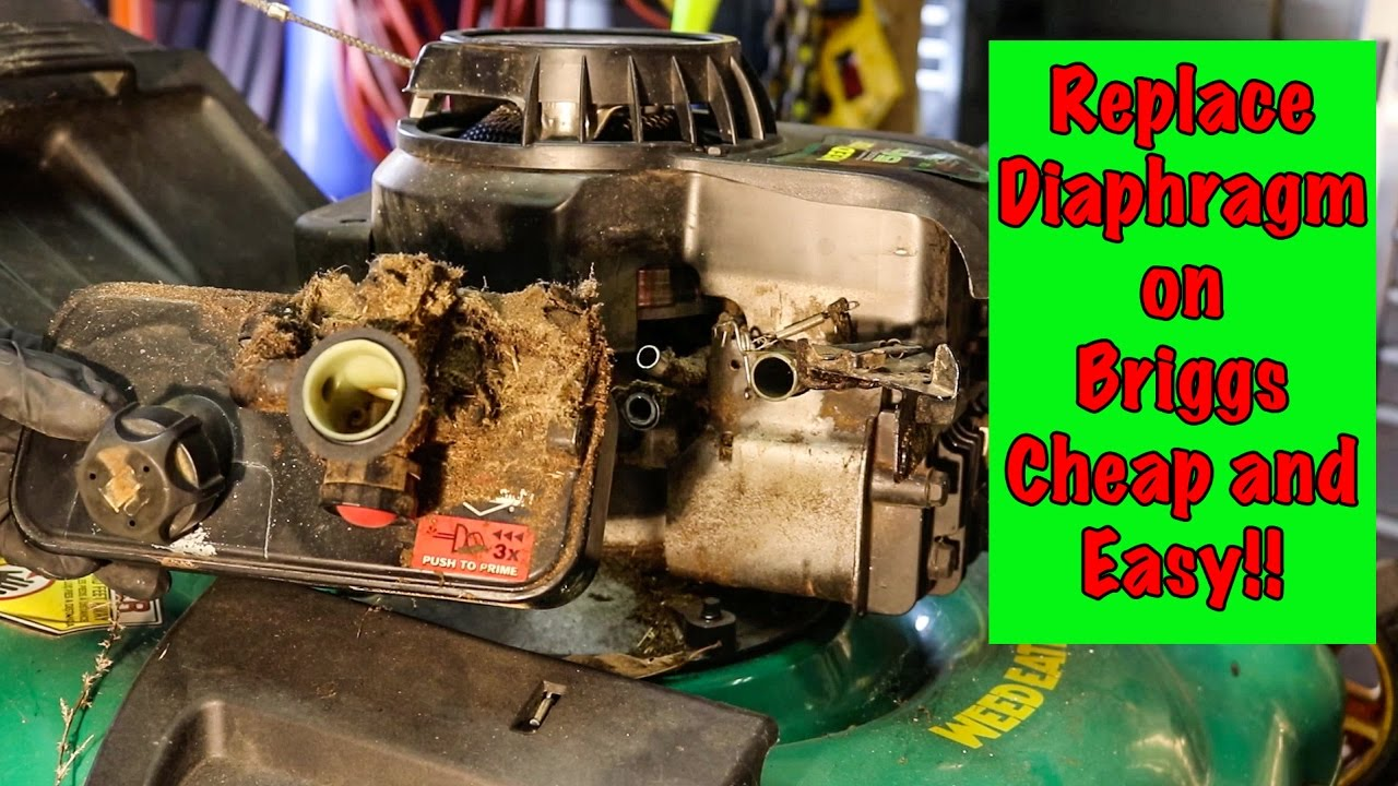 How TO: Briggs and Stratton Carburetor Diaphragm Repair with Primer