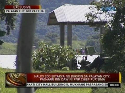 Halos 200 ektarya ng bukirin sa palayan city, pag-aari rin daw ni PNP Chief Purisima
