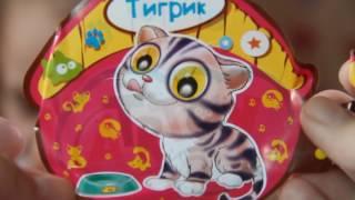 ✽ Пушистые Котята в коробочках Fluffy Kittens in boxes unpacking
