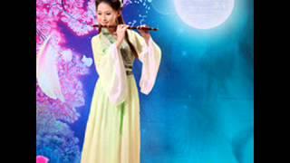 Instrumen Musik Indah China