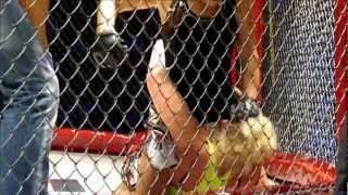 Walka kobiet w klatce MMA. EFS Gdynia 2012