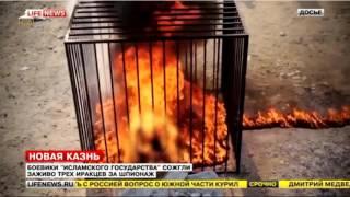 Новости Украины и России ИГИЛ новые казни