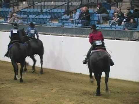 Western Pleasure Riding