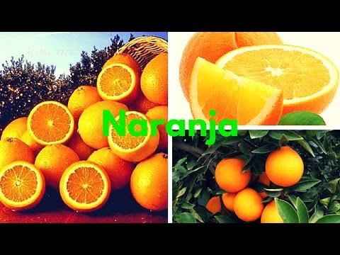 5 Beneficios y Propiedades de la Naranja para la Salud