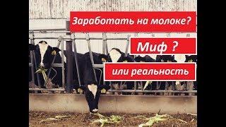 Бизнес идеи 2018, Как заработать 216 000 рублей на одной голове крупно рогатого скота