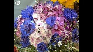 Херсонські квіти та ягоди