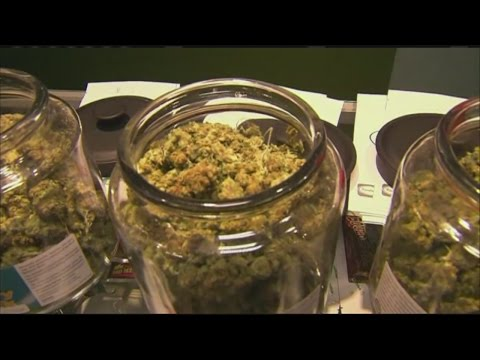 Recreational Marijuana legalized in Massachusetts
